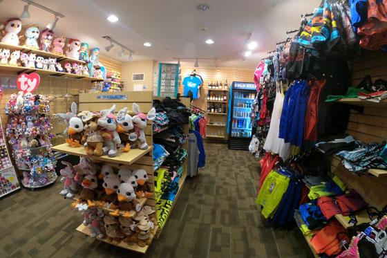 Trader's Blanket (Adaawewinini Waabooyan) Gift Shop
